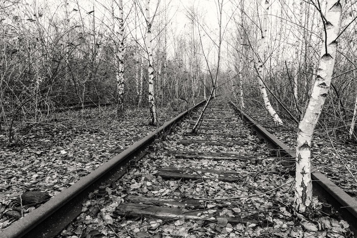 Totes Gleis  | © Dieter Vollmer