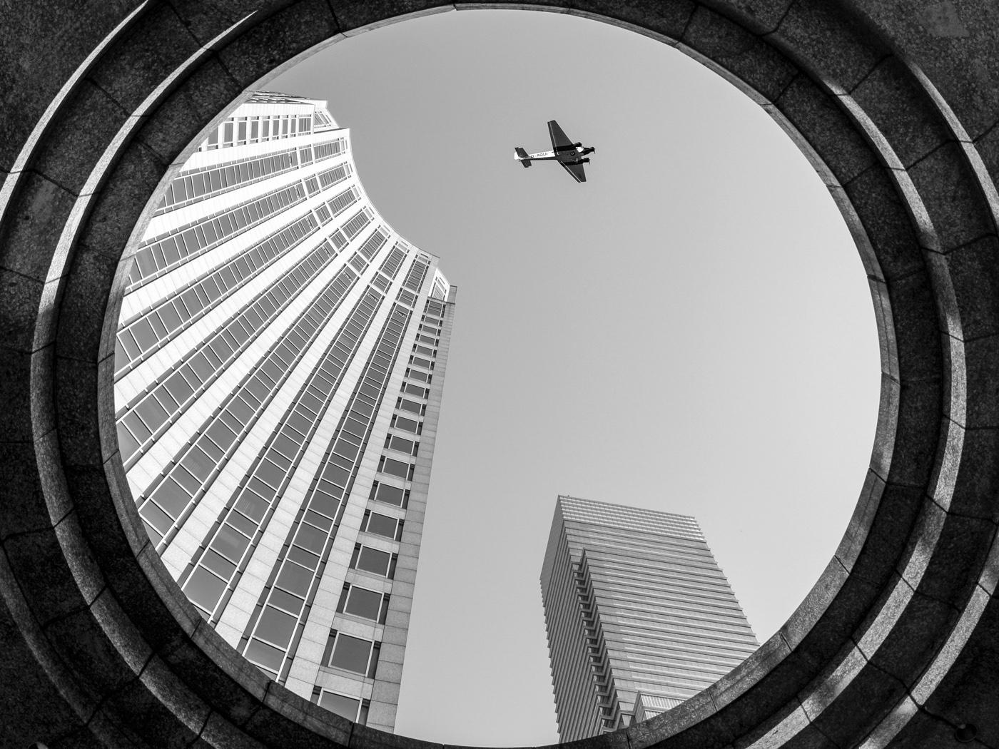 Überflieger | © Dieter Vollmer