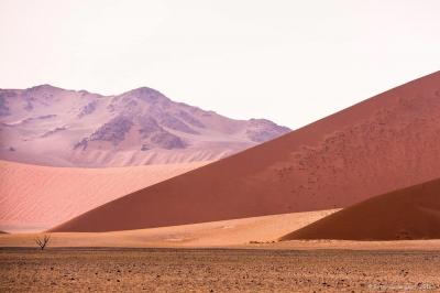 Formen in der Wüste - Peter Berlinghof