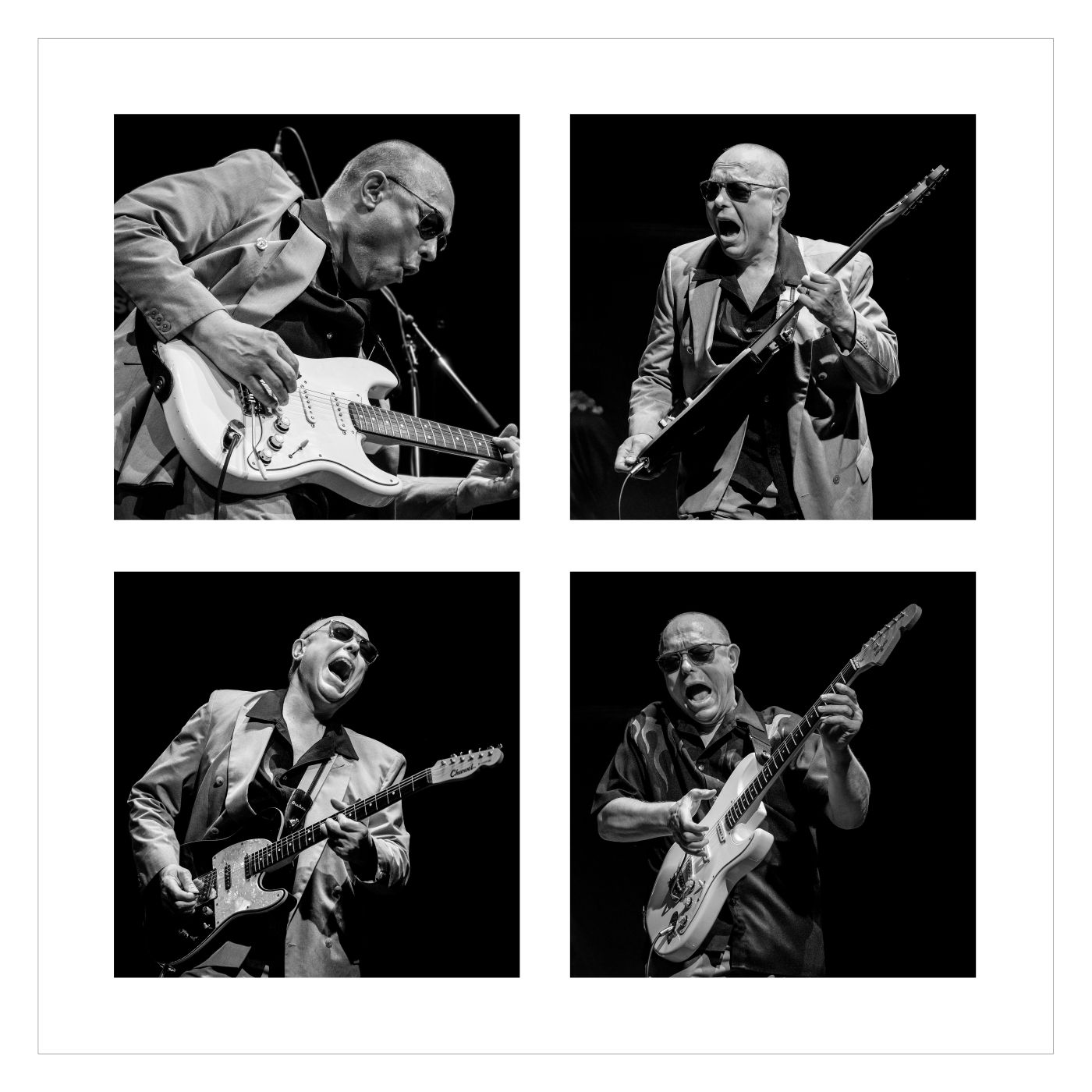 Annahme:  Mr. Blues   | © Wolfgang-Roeser