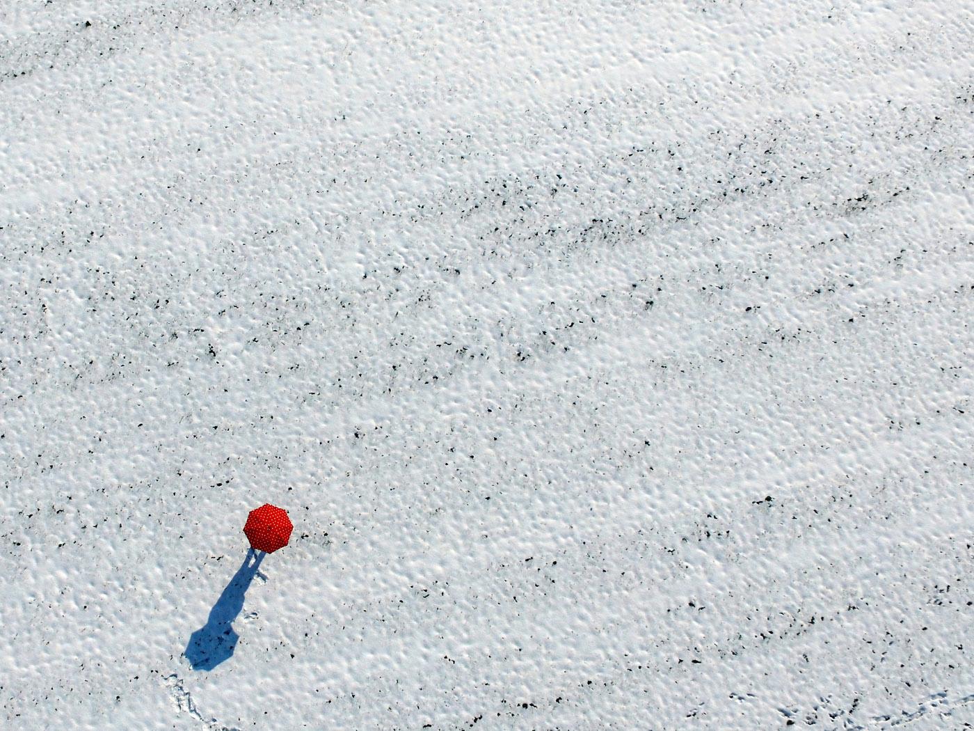 Rotweiß | © Dieter Vollmer