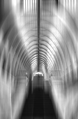 Lichtdurchflutet   © Marianne Wogeck