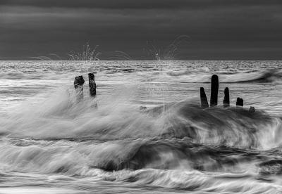Splash   © Sonja Molter