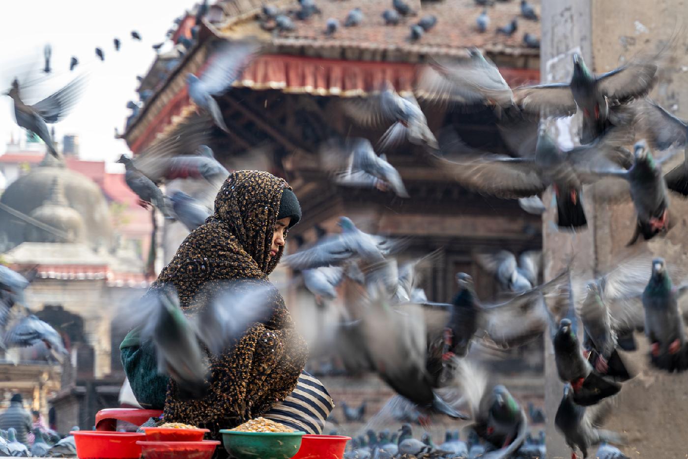 Bird Seed Girl   © Fred Eversmann
