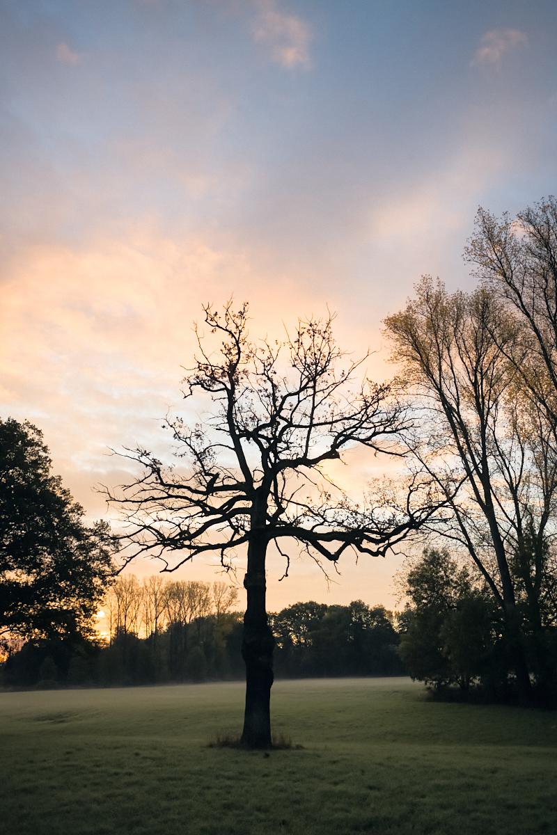 Goldener Oktober 01   © Elmar Kemnade