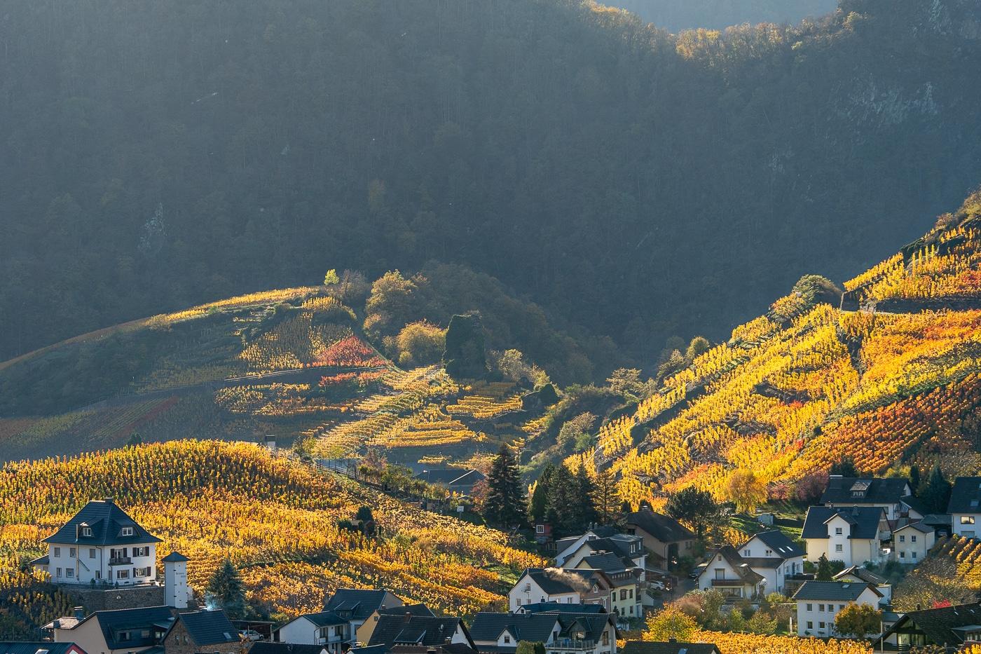 Herbstabend | © Roland Gras