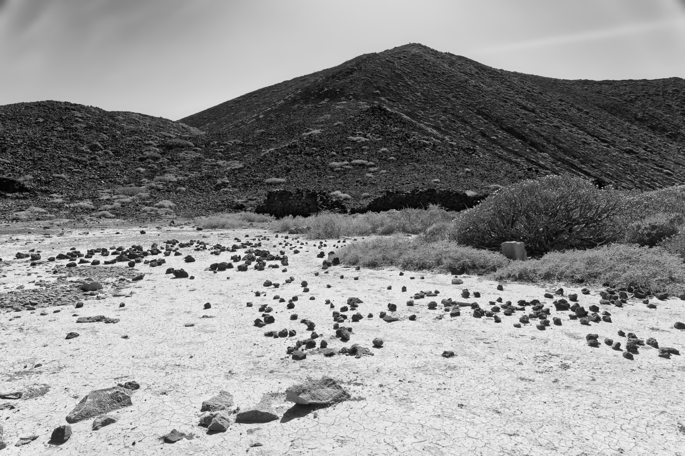 Isla de Lobos 14   © Peter Berlinghof