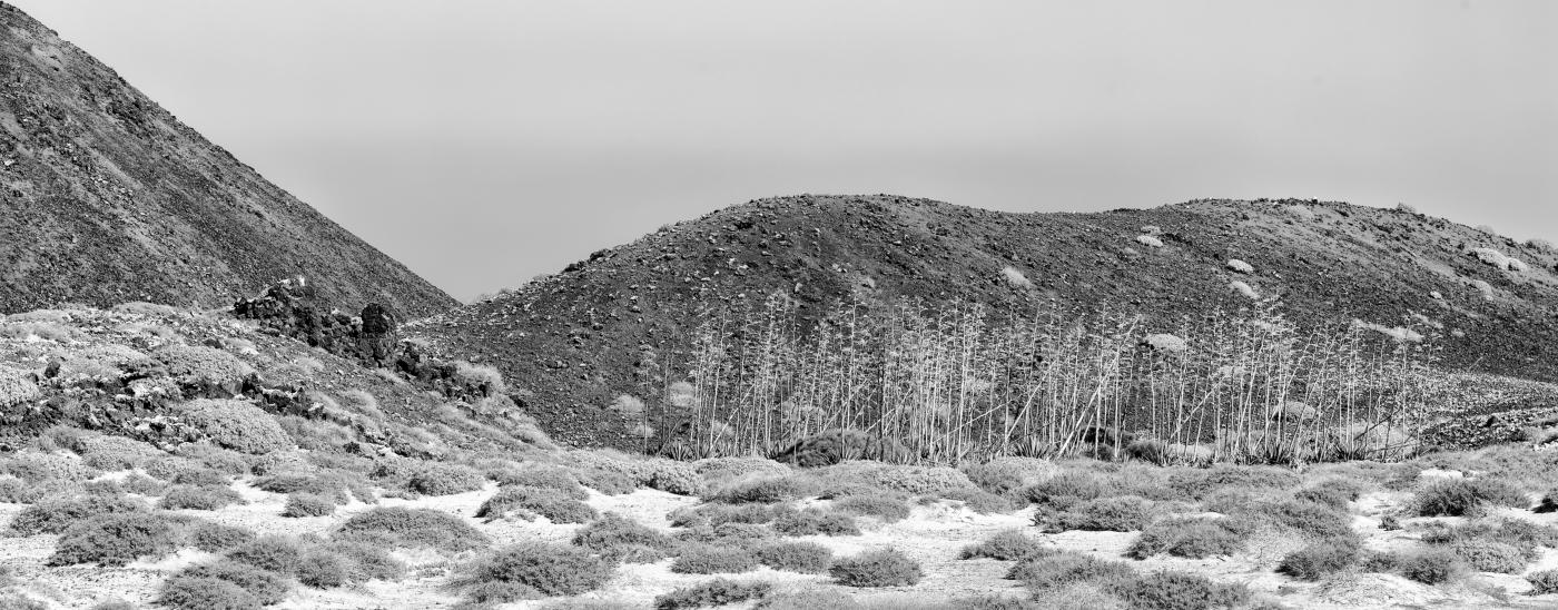 Isla de Lobos 18   © Peter Berlinghof