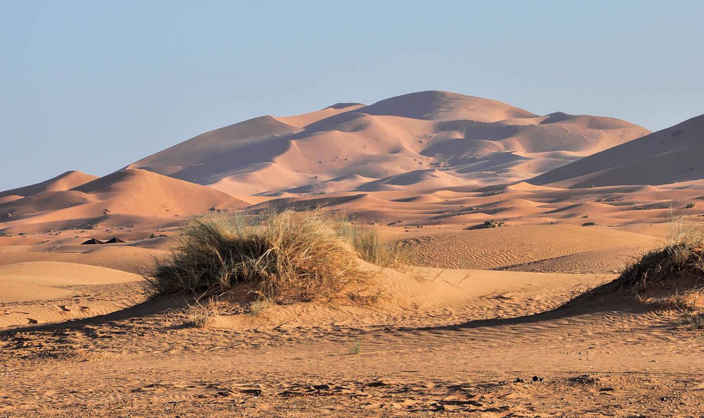 Sahara  © Marianne Wogeck